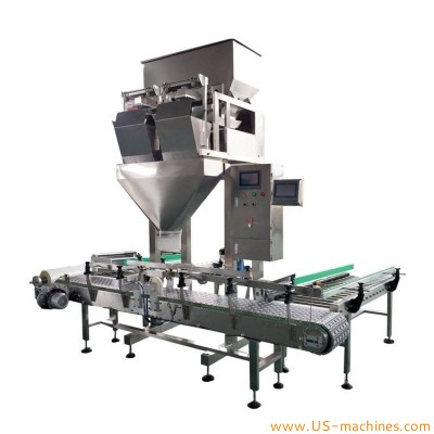Automatic 2 head electrical linear weigher filler 5kg 10kg 15kg 20kgs plastic bag in carton box container for packing seed rice beans granule
